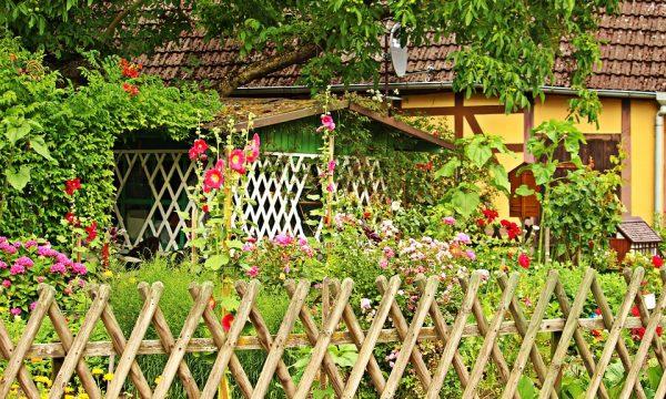 Realizzare un giardino fai da te